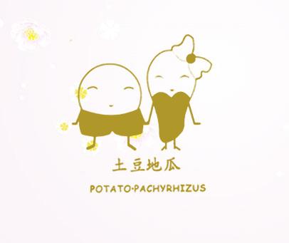 土豆地瓜- POTATO.PACHYRHIZUS