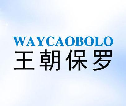 王朝保罗-WAYCAOBOLO