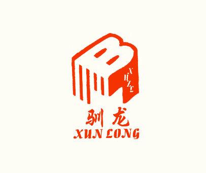驯龙-XHZL-B