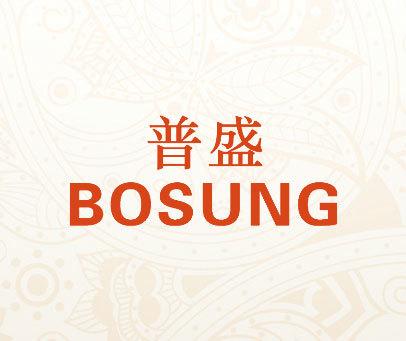 普盛-BOSUNG