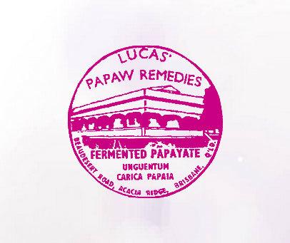PAPAW REMEDIES LUCAS FERMENTED PAPAYATE UMGUENTUM CARICA PAPAIA