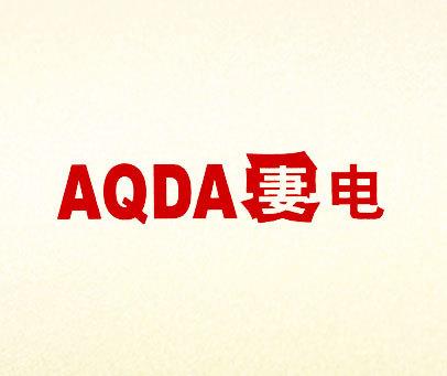 妻电-AQDA