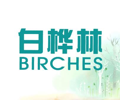 白桦林-BIRCHES