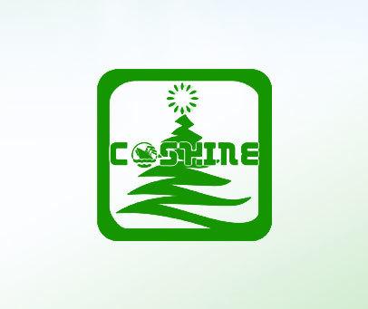 CSKINE