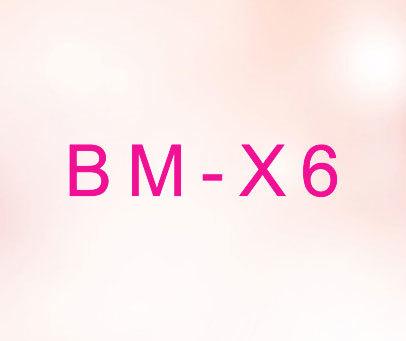 BM-X-6