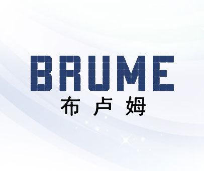 布卢姆-BRUME
