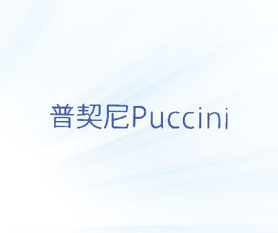 普契尼-PUCCINI