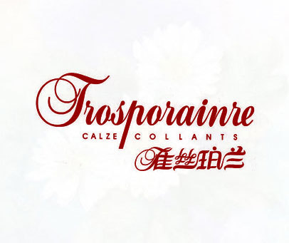 雀丝珀兰-TROSPORAINRE-CALZE-COLLANTS