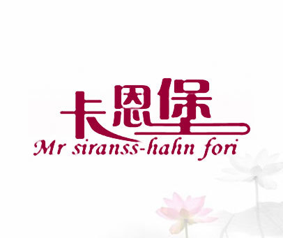 卡恩堡-MR-STRAUSS-KAHN-FORT