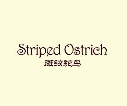 斑纹鸵鸟-STRIPED-OSTRICH