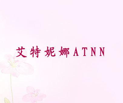 艾特妮娜-ATNN
