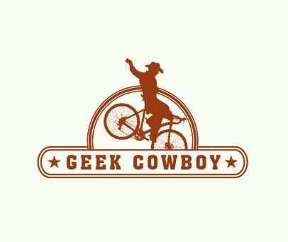 GEEK-COWBOY