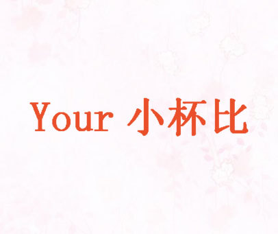 Your-小杯比