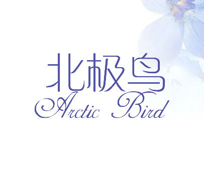 北极鸟-ARCTIC-BIRD
