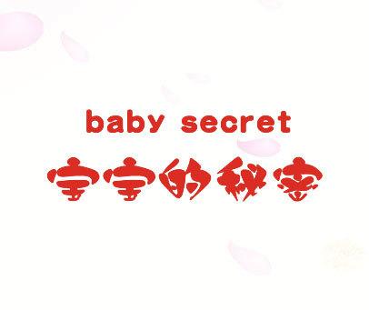 宝宝的秘密-BABY-SECRET