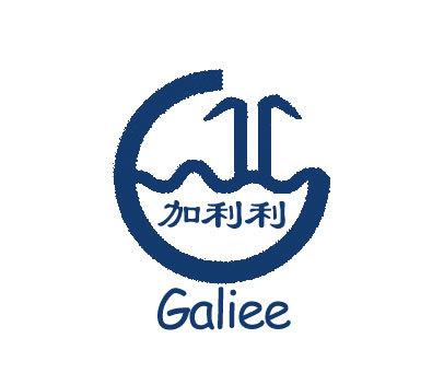 加利利-GALILEE