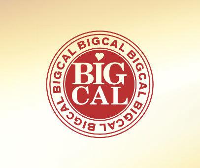 BIGCAL