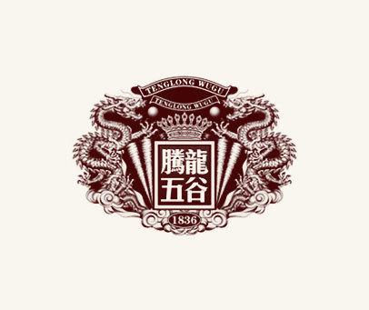 腾龙五谷-1836