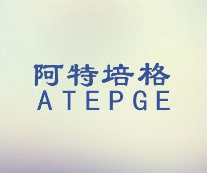 阿特培格-ATEPGE