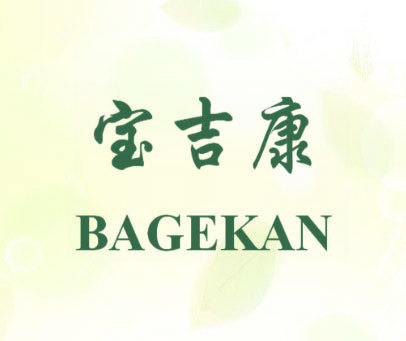 宝吉康-BAGEKAN