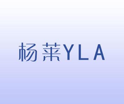 杨莱-YLA