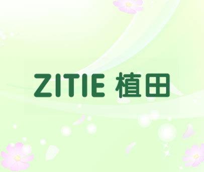 植田  ZITIE