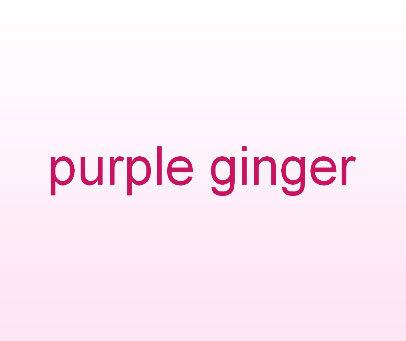 PURPLE GINGER