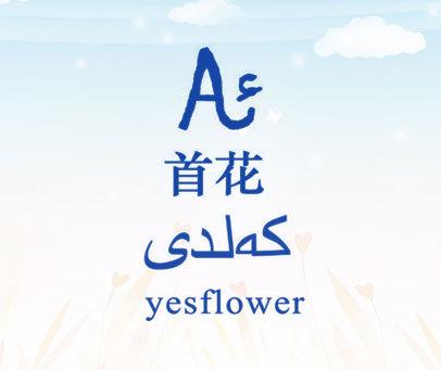 首花 YESFLOWER A
