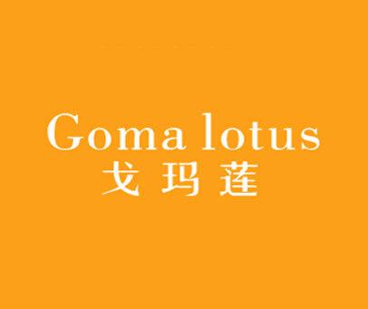 戈玛莲 GOMA LOTUS