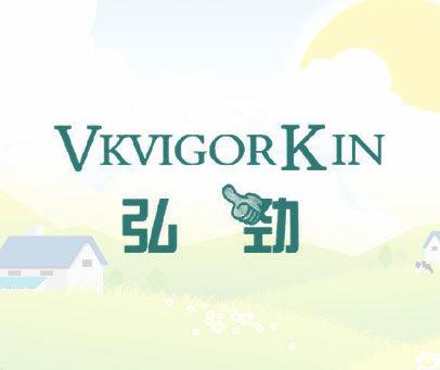 弘劲  VKVIGORKIN