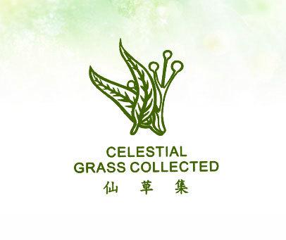 仙草集 CELESTIAL GRASS COLLECTED