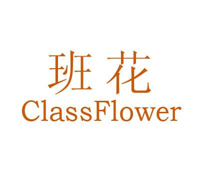 班花-CLASSFLOWER