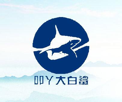 叩丫大白鲨
