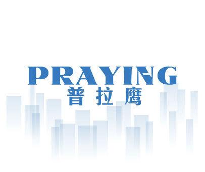 普拉鹰-PRAYING