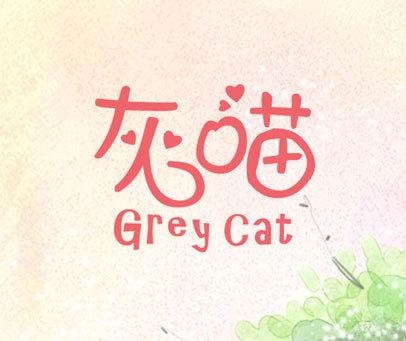 灰喵 GREY CAT