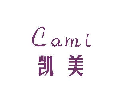 凯美-CAMI