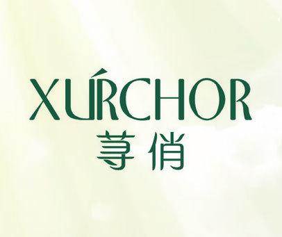 荨俏 XURCHOR