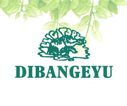 DIBANGEYU