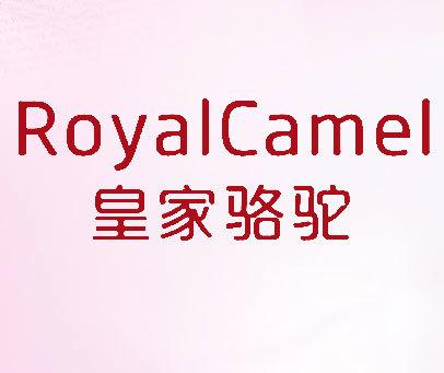 皇家骆驼 ROYALCAMEL
