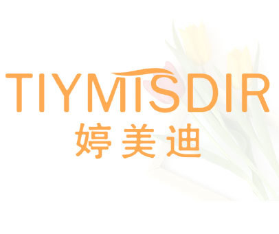 婷美迪 TIYMISDIR
