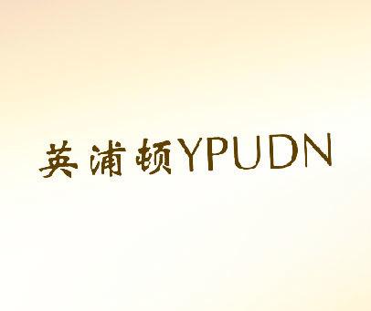 英浦顿  YPUDN