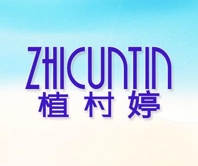 植村婷 ZHICUNTIN