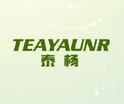 泰杨 TEAYAUNR