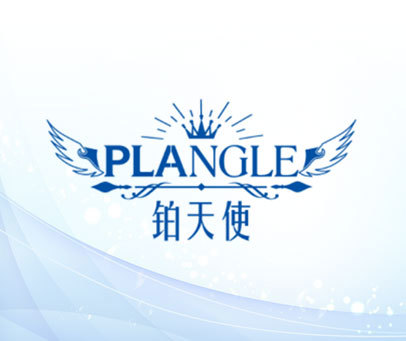 铂天使 PLANGLE