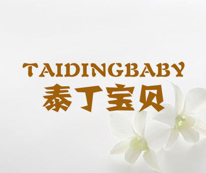 泰丁宝贝 TAIDINGBABY