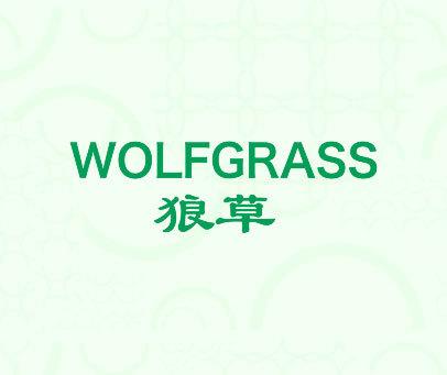 狼草 WOLFGRASS