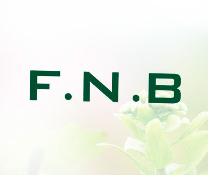 F.N.B