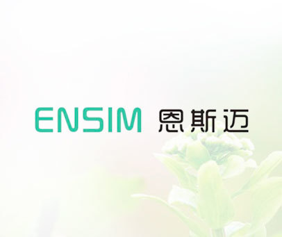 恩斯迈 ENSIM