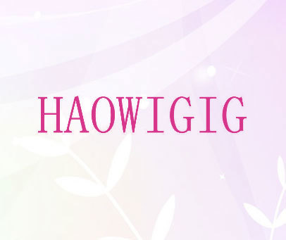 HAOWIGIG