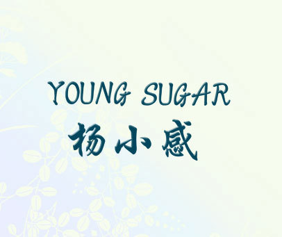 杨小感 YOUNG SUGAR